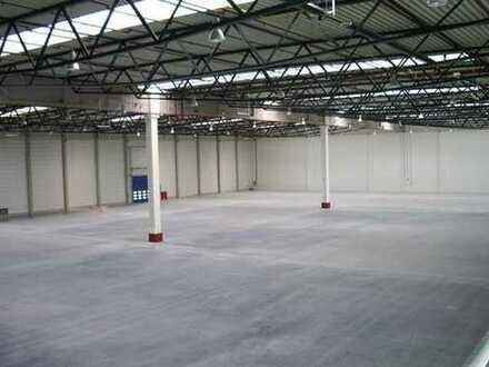 """BAUMÜLLER & CO."" - ca. 4.000 m² - Logistik-Neubau - Top Lage!"