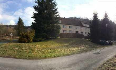 Schöne 2 - Raum Wohnung mit Einbauküche in Heinersdorf