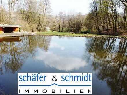 ### Einzigartig gelegenes Idyllisches Wiesen + Waldgrundstück mit Fisch- und Schwimmteich ###