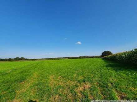 Landwirtschaftliche Fläche in Dachau-Süd