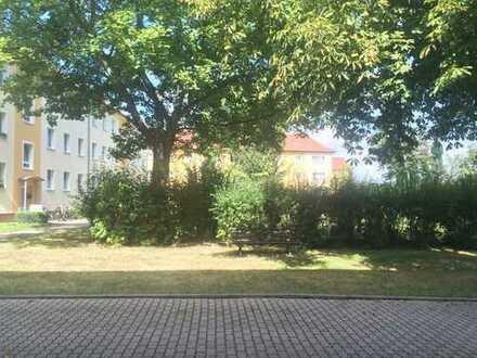 ruhige 2,5 Erdgeschosswohnung in Liebertwolkwitz