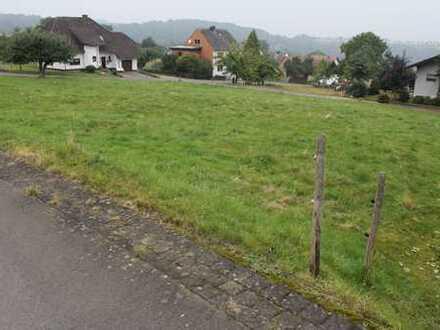 *Voll erschlossenes Grundstück in Deuselbach*