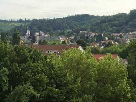 Etagenwohnung mit wundervollen Blick auf den Odenwald