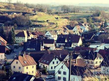 Landwirtschaftliches Anwesen mit nostalgischem Innenhof, Scheune & Bauplatz