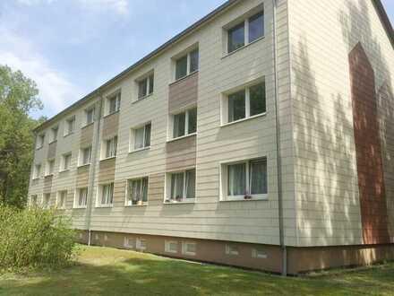 Komplett renoviert, 3 Zimmer Wohnung in der Waldsiedlung Ziegendorf!