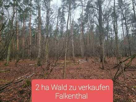 2 ha Wald