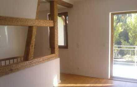 Großzügiges 1-2 Familienhaus, ideal für eine große Familie, 10min zur A81