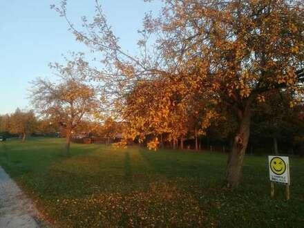 Magstadt - Erholung und Ruhe pur im Gartenhausgebiet Reisach