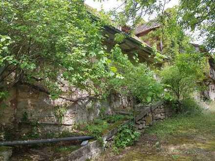 Sanierungsbedürftiges Haus (Hofstelle) mit Stallung und Garten zu verkaufen