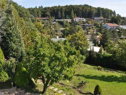 Schönes Haus in direkter Waldrandlage - Panoramablick