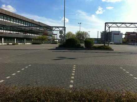 Ideal für Auto-Handel: ca 3.000 qm befestigte Freifläche in Neustadt/Weinstr., Speyersdorfer Str.