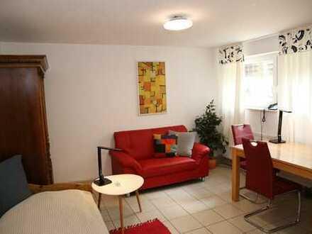 möblierte 1-Zimmerwohnung mit Wlan, TV, Dusche/Wc, Küche, löffelfertig möbliert