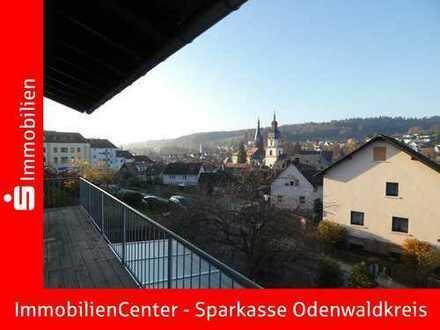 Über den Dächern von Erbach... -keine Käuferprovision-