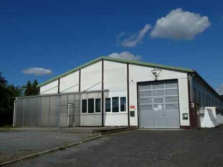 TOP-Gewerbehalle mit Kran - viel Platz, keine Provision - sehr verkehrsgünstig in Rhein/Main