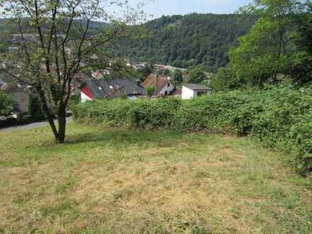 Neckargerach Bauplatz 1089 qm, schöne Hang und Aussichtslage,