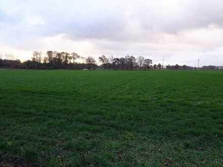 Landwirtschaftliche Fläche in Gronau-Epe zu verkaufen!