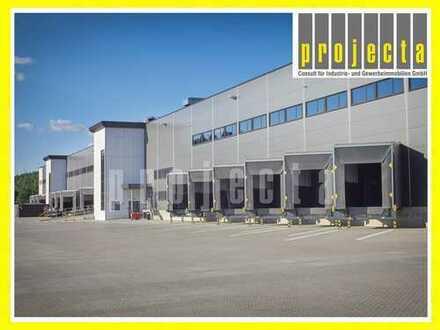 20.500 m² Lagerneubau+Mannheim-Nord+bis WGK 3+2017/2018+0173-2749176+PROVISIONSFREI