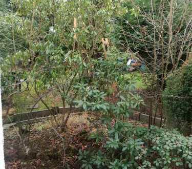 WG-Zimmer teilmobiliert in großem renovierten Haus mit Garten in Städtenähe gute Busanbindung