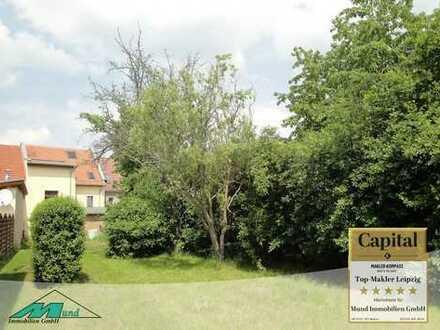 Attraktive Kapitalanlage mit 3 Wohnungen und begrüntem Grundstück in Bad Lausick