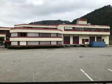 Firmenkomplex mit Produktionshallen, Büroräumen, Lagerflächen