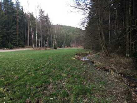 Acker , Wiese und Wald
