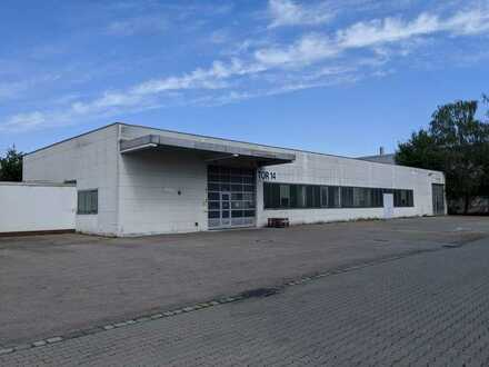 765 m² Hallenfläche mit Außenfläche – provisionsfrei zu vermieten