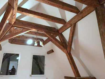 Helle 3-Zimmer Wohnung mit EBK, Holzgebälk, Dielenboden und viel Charme in Nürnberg-Erlenstegen