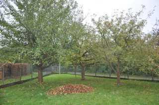 Grundstück für Doppelhaushälfte mit Altbestand in TOP-Lage von Bonn-Venusberg
