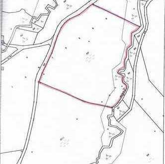 Wiese mit Teilbewaldung bei Oy-Mittelberg