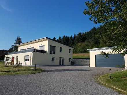 Wohn- und Praxisgebäude auf großem Grundstück