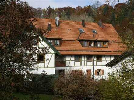 Renovierte 3-Zimmer-Wohnung in Ahegg