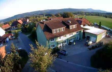 Schöne Energetisch sanierte 4-Zimmer-Wohnung mit Balkon und EBK in Birndorf