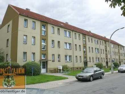 Vollversion Expose! Wohngebiet am Waldrand in Bernsdorf