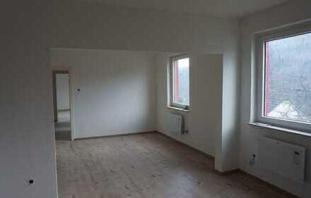 Sehr helle 3 Zi. Wohnung im Souterrain, Blick über das Lennetal
