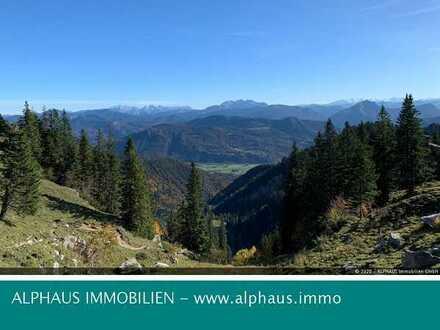 Investieren Sie in die Zukunft - Bergwald mit sehr guter Zufahrtsmöglichkeit zu verkaufen