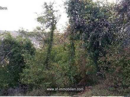 Obstbaumwiese in Aussichtslage