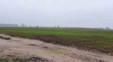 Landwirtschaftsfläche in Döbberin