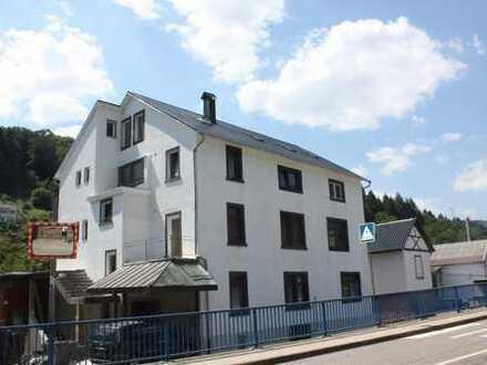Tolles Mehrfamilienhaus mit großen Garten, Hobbyräumen und ausbaufähigen Dachgeschoss in Hirschhorn