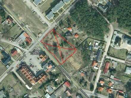 Großes Baugrundstück mit genehmigter Bauvoranfrage für 1625m² Wohnfläche