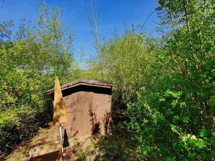 Idyllisch ruhig gelegener Garten mit Geschirrhütte