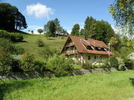 Behaglich leben in gepflegtem Landhaus mit zwei großen Wohnungen und traumhaftem Garten!