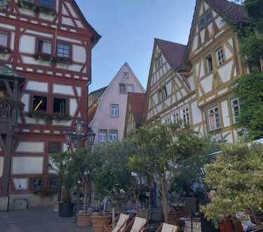 Idyllische Maisonette Wohnung, Ludwigsburg (Kreis), Besigheim
