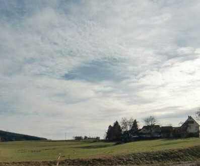 3849qm Grundstücksfläche mit Baufeld und vermietetem Haus in Oberzent zu verkaufen
