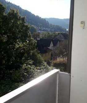 Ruhige, helle, renovierte 4-Zimmer-Wohnung mit Balkon und Einbauküche in Schramberg