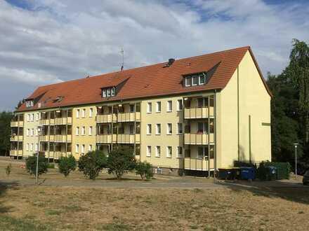 Großzügige 2-Raum Wohnung mit Balkon