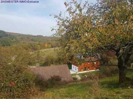 Reiterhof in Alleinlage - Aussiedlerhof 18 ha