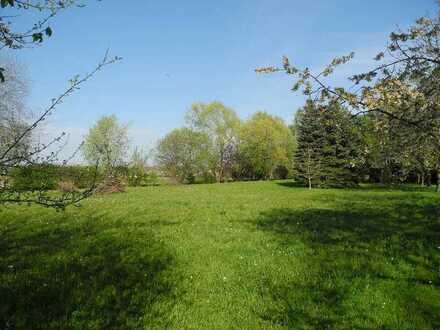 Idyllisches Freizeitgrundstück mit Gartengerätehütte - hier können Sie ungestört die Natur genießen!