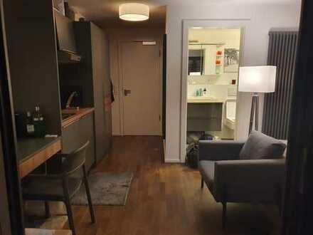 Stilvolle 1-Zimmer-EG-Wohnung (Loft/Appartment) voll möbliert in Flein