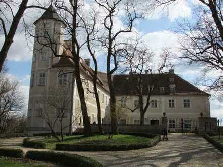 Nahe zu Ingolstadt/Manching: Romantische, renovierte 4 Zimmer DG Wohnung