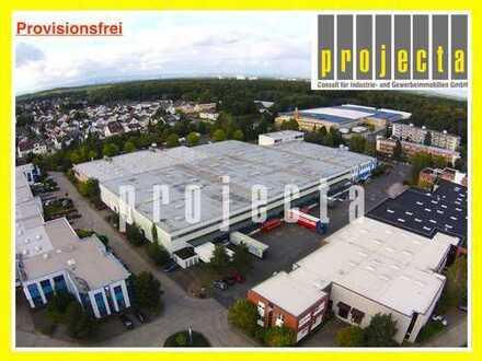 PROVISIONSFREI: 1.200 m² Lagerfläche | Rampentore | kleiner Büroanteil | 8,5 m UKB Hallenhöhe